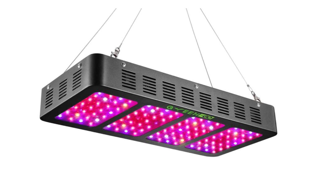 Greengo LED Quantum Board